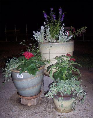 Trio of pots copy